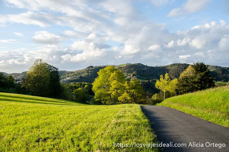 pequeña carretera entre prados y montes al fondo qué ver en getaria y alrededores