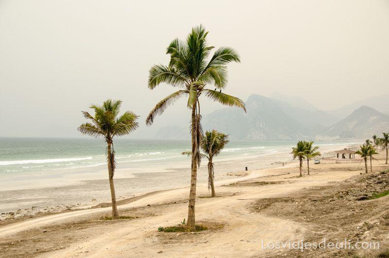 imágenes y sensaciones de la playa de mughsail en Salalah