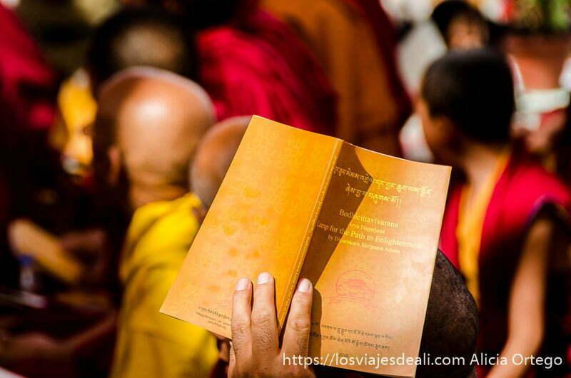 mano alzando libro del dalai lama