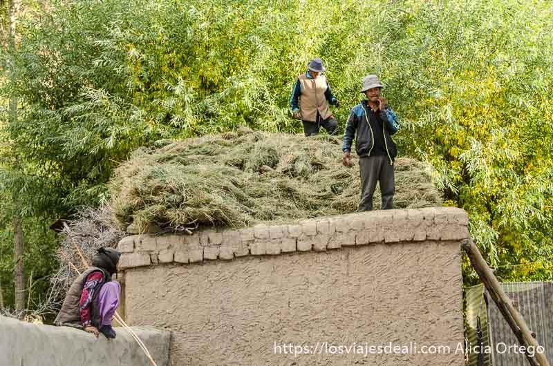 campesino sobre un gran montón de hierba para el ganado trekking cerca de leh