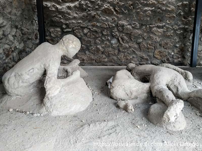 cadáveres en posición de protección visita a pompeya