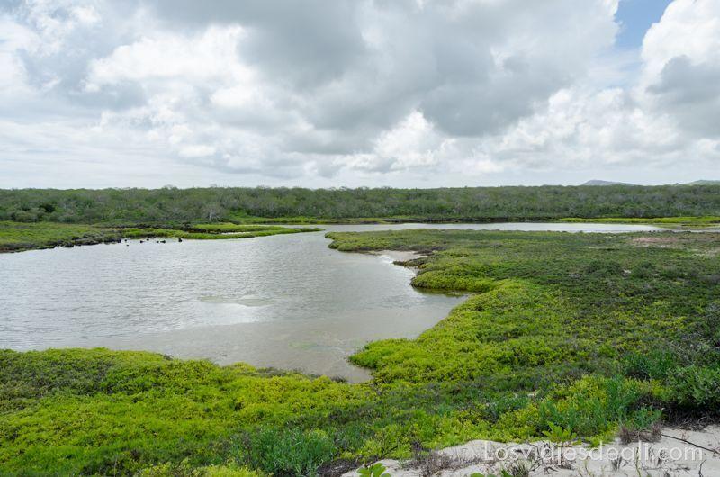 bahía sardinas en isla San Cristóbal