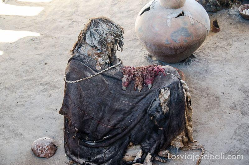 momias de chauchilla perfil