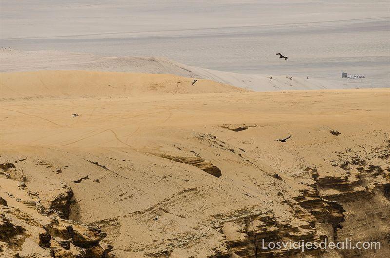 desierto de paracas peru