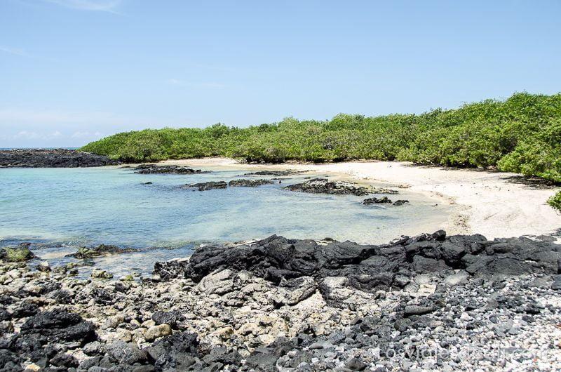 playa de islote tintoreras