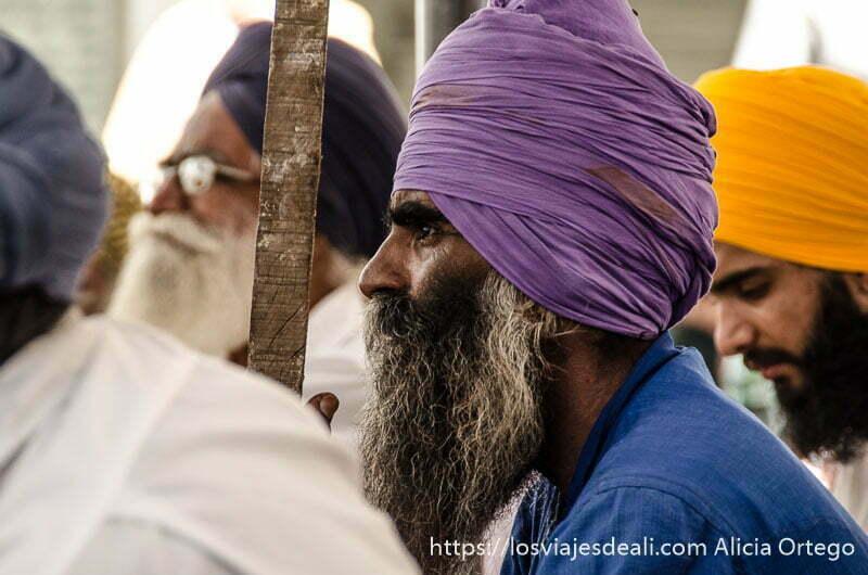 sij con turbante morado y gran barba canosa en el templo dorado de los sijs