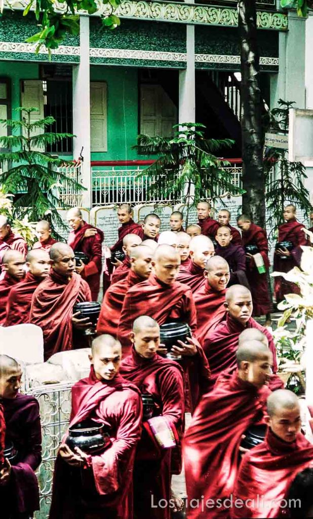 myanmar monjes