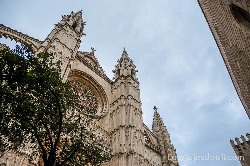 palma de mallorca monumental catedral fachada