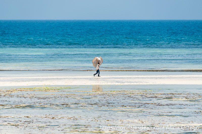 playas de zanzíbar kizimkazi