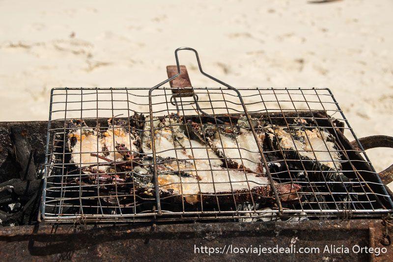playas de zanzíbar barbacoa de langosta