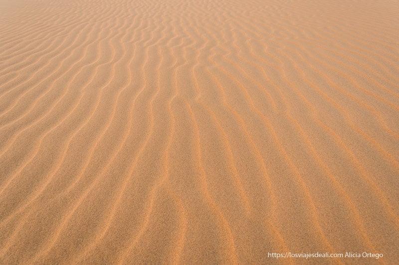 dibujos en la arena del desierto