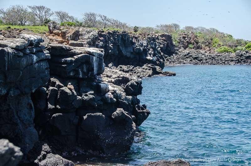 rocas formando puerto natural en excursión a isla seymour
