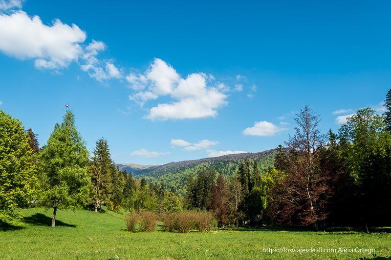 paisaje primeras impresiones de un viaje a transilvania