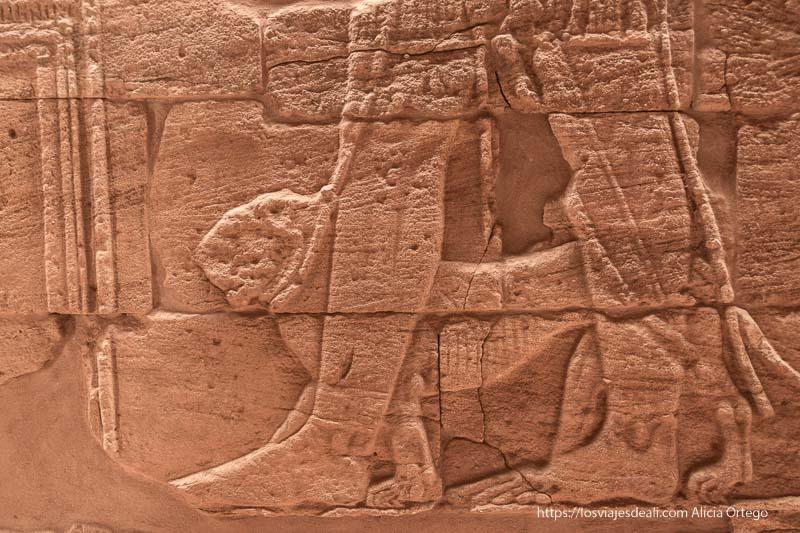 relieve del faraón llevando una leona atada en el templo de Naqa en Sudán