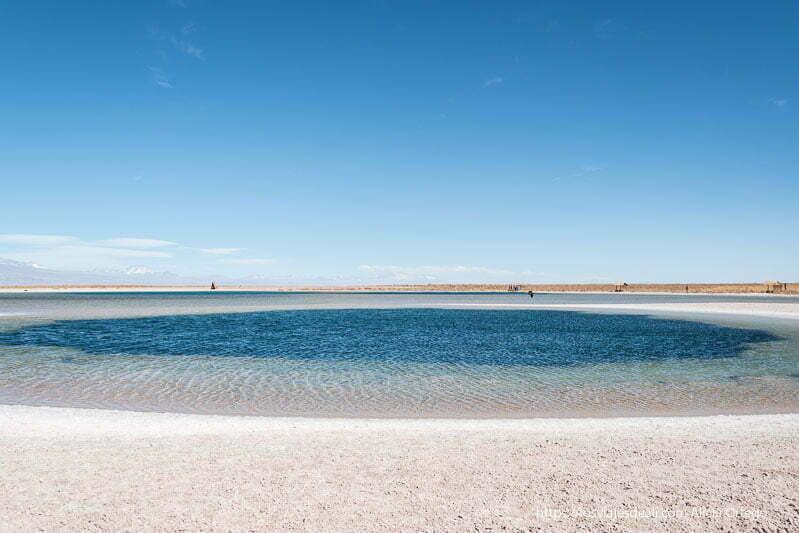 viajar al desierto de atacama laguna céjar