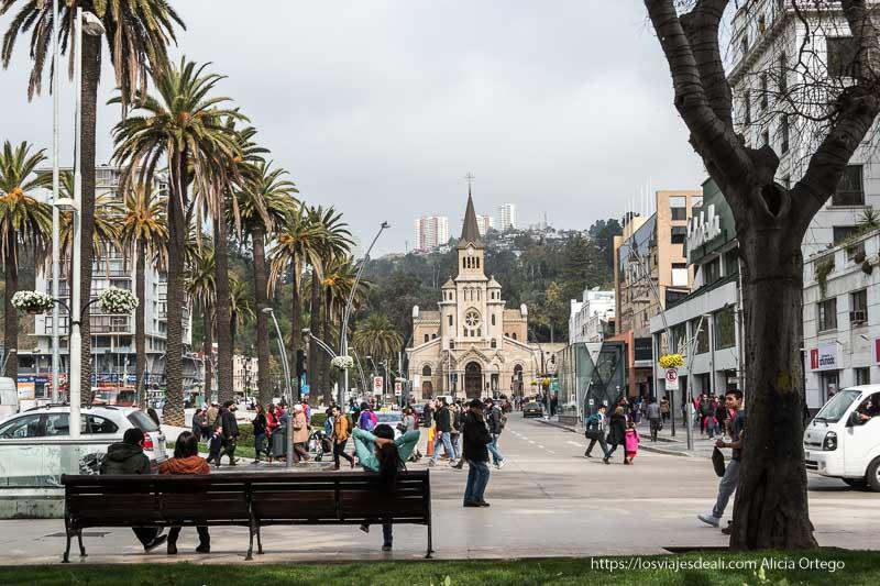 iglesia al fondo de avenida de palmeras con señor cruzando delante Viña del mar y valparaíso