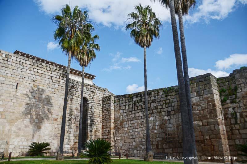 murallas de la alcazaba de mérida con palmeras muy altas