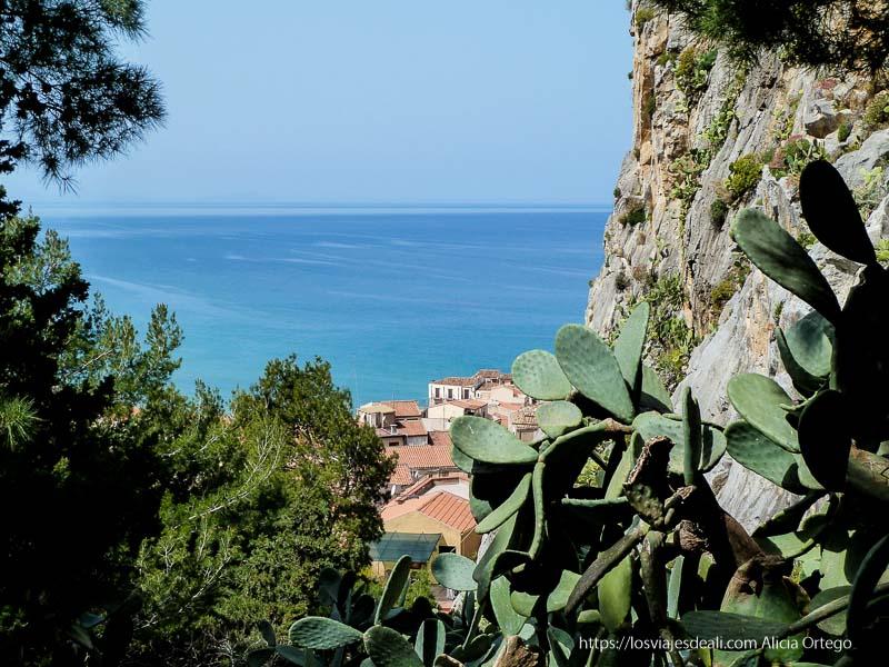 chumberas, árboles y mar al fondo en la rocca de cefalú