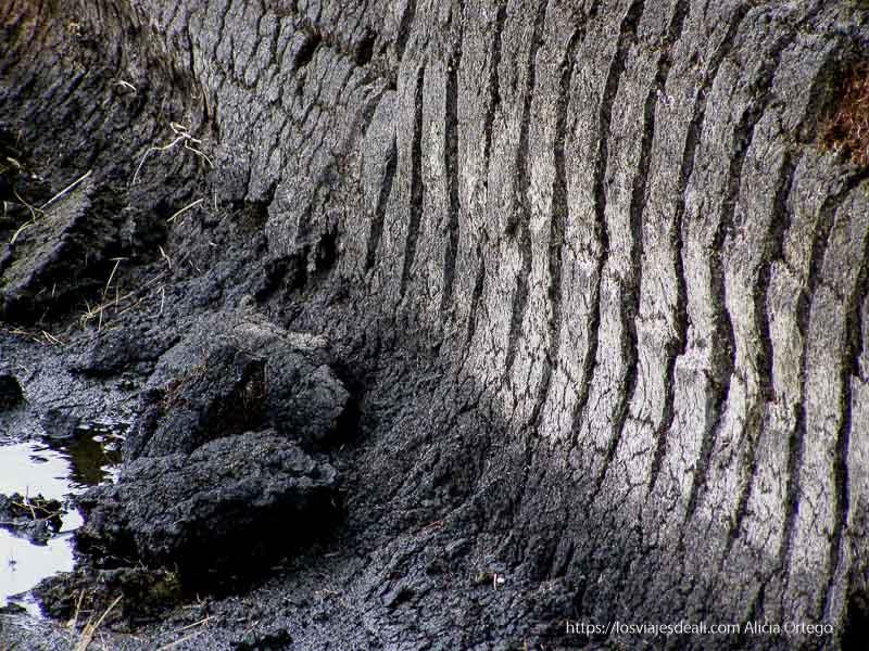 turba, una especie de barro de color negro y gris