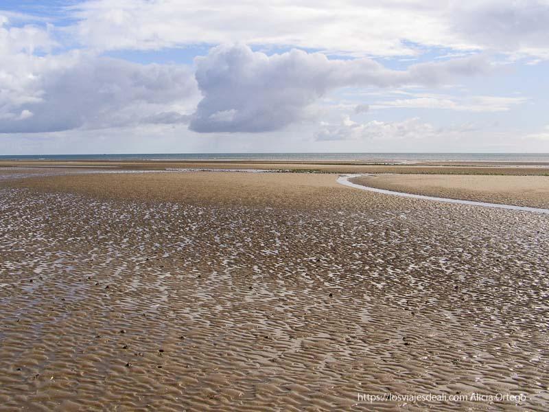 playa enorme de costa este de irlanda