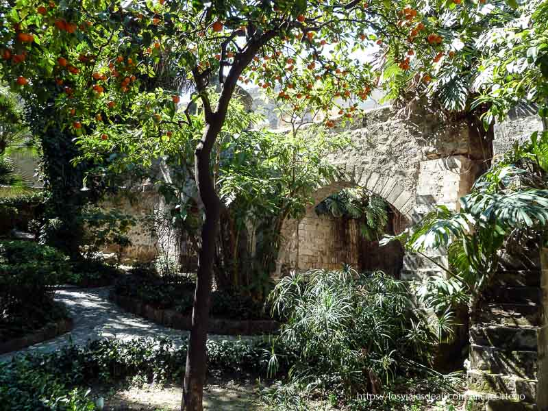 jardín árabe con naranjo iglesias y mercados de palermo