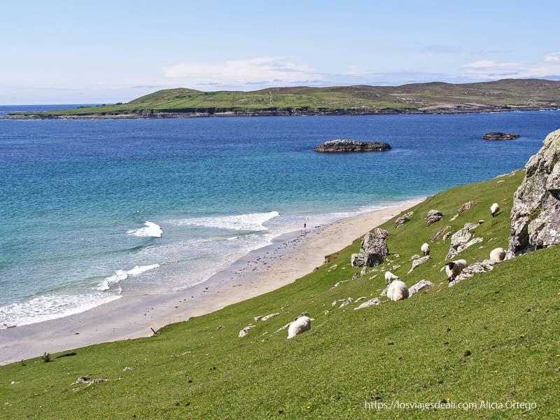 playa de arena blanca y aguas turquesas en Inishbofin