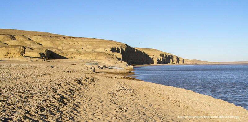 río amur daria en uzbekistán