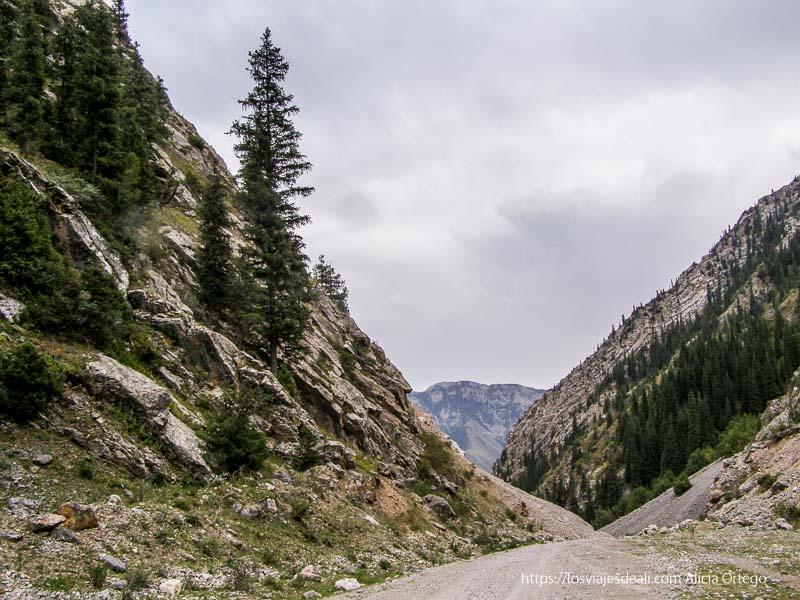 montañas con abetos al lado de la carretera junto al lago song kol