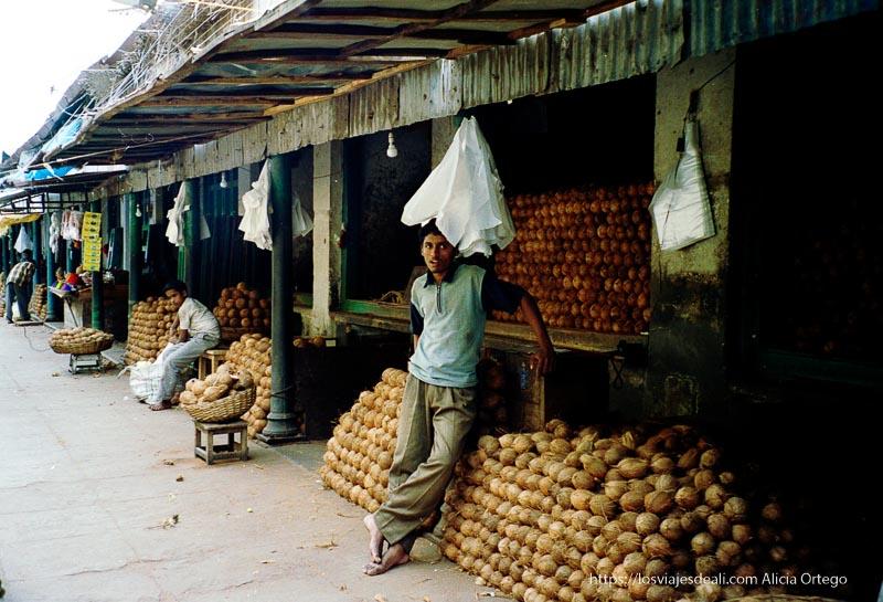 puestos de cocos en el mercado de mysore