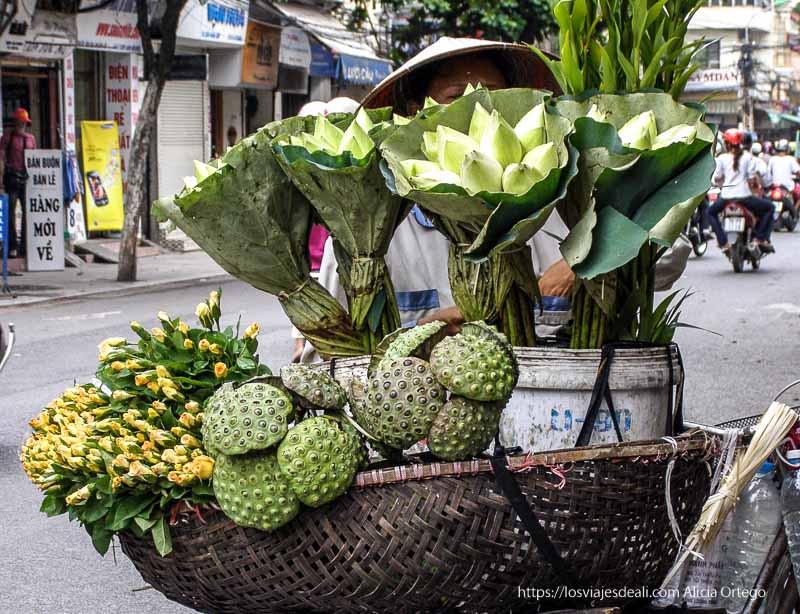 mujer vendiendo flores de loto en cesta en bicicleta qué ver en hanoi