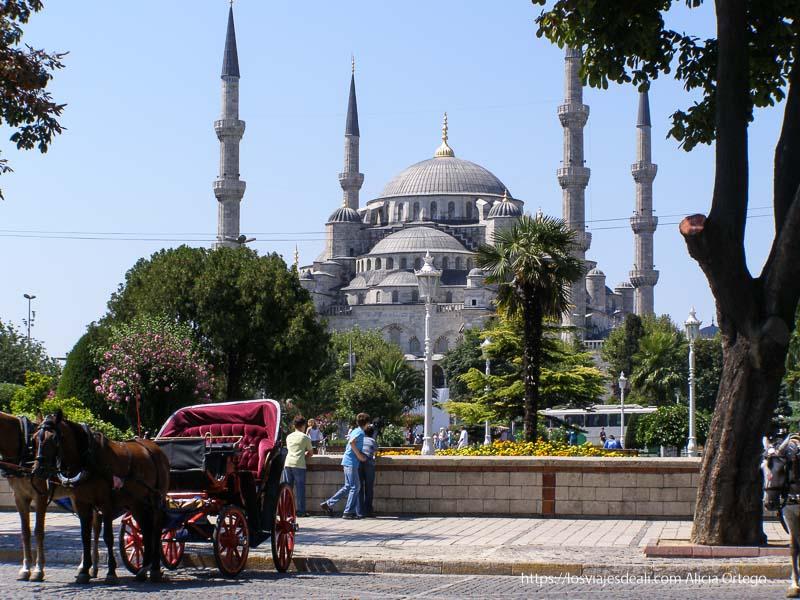mezquita azul con coche de caballos delante qué ver en un día en estambul