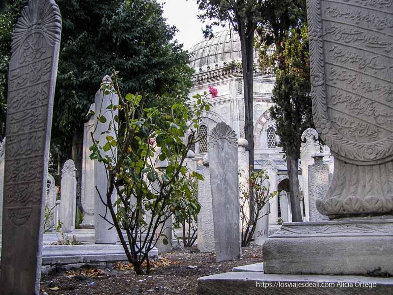 antiguo cementerio turco qué ver en un día en estambul