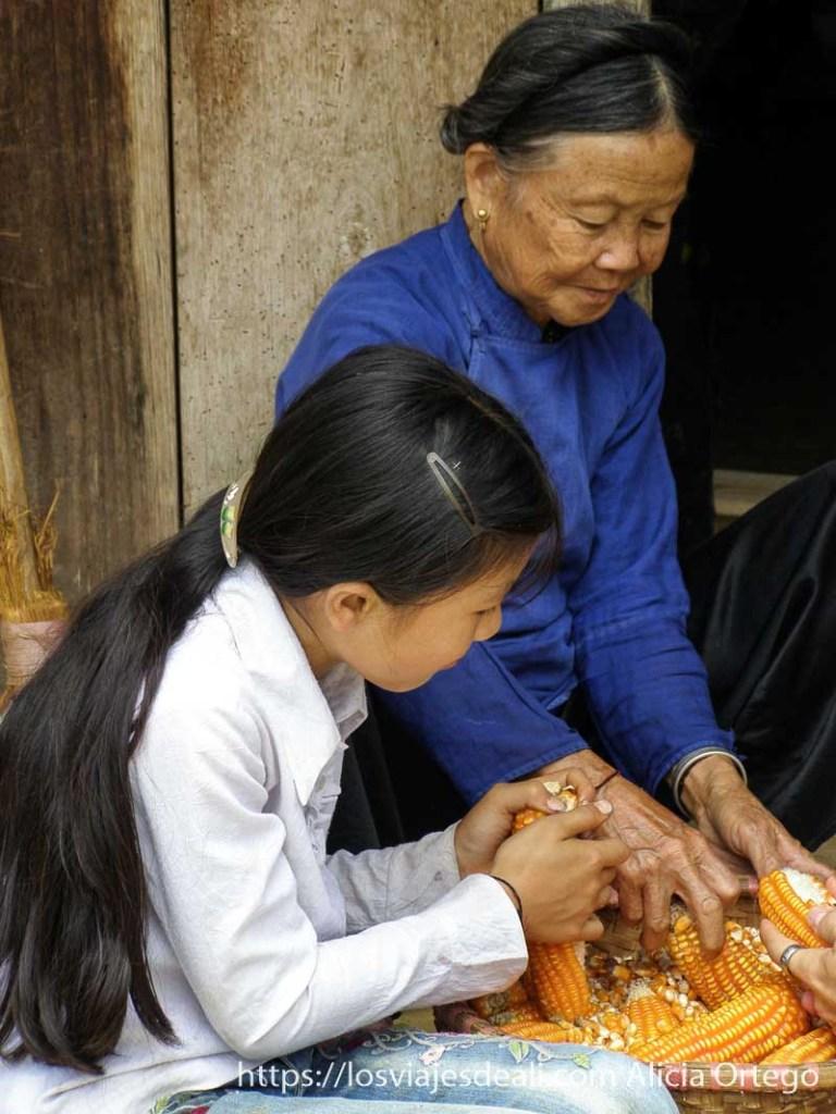 mujer con camisa azul y su nieta desgranando mazorcas de maíz en el norte de vietnam