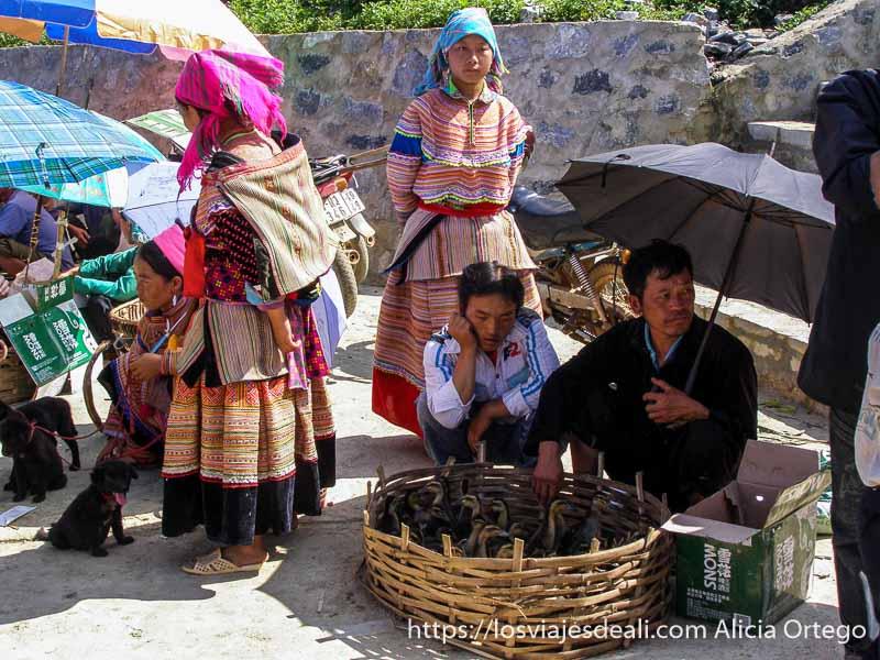 venta de patitos y cachorros de perro en el mercado de bac ha en el norte de vietnam