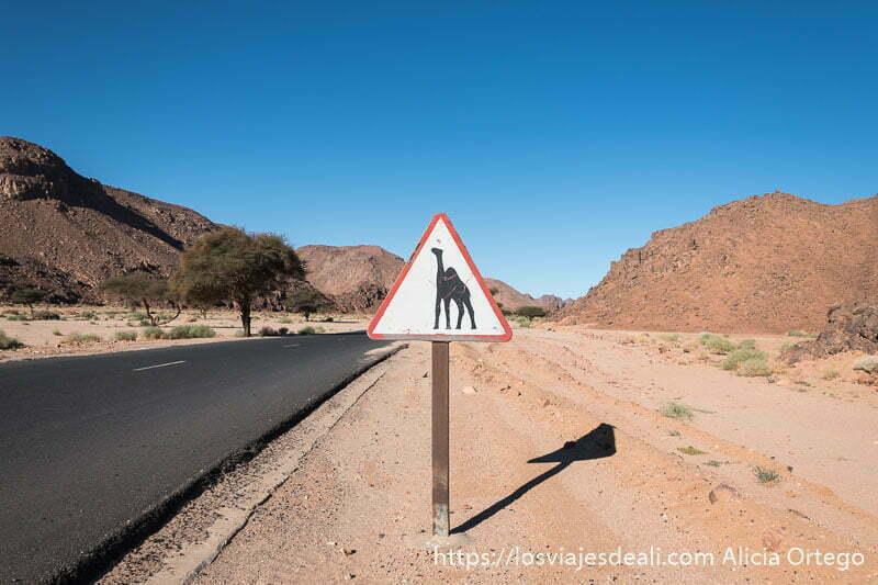 señal de advertencia de paso de camellos en paisajes del sahara