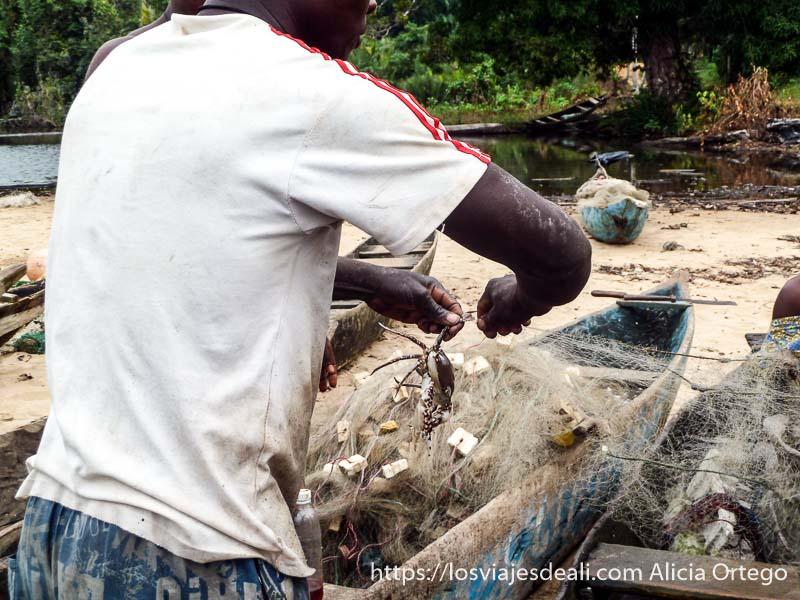 pescador quitando cangrejo de una red en camerún