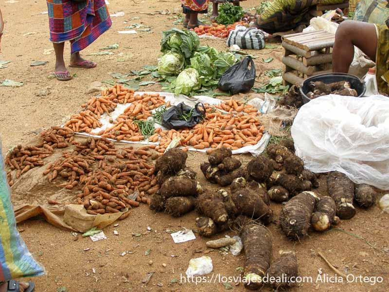 puesto de zanahorias y raíces tipo boniato en montes bamileké