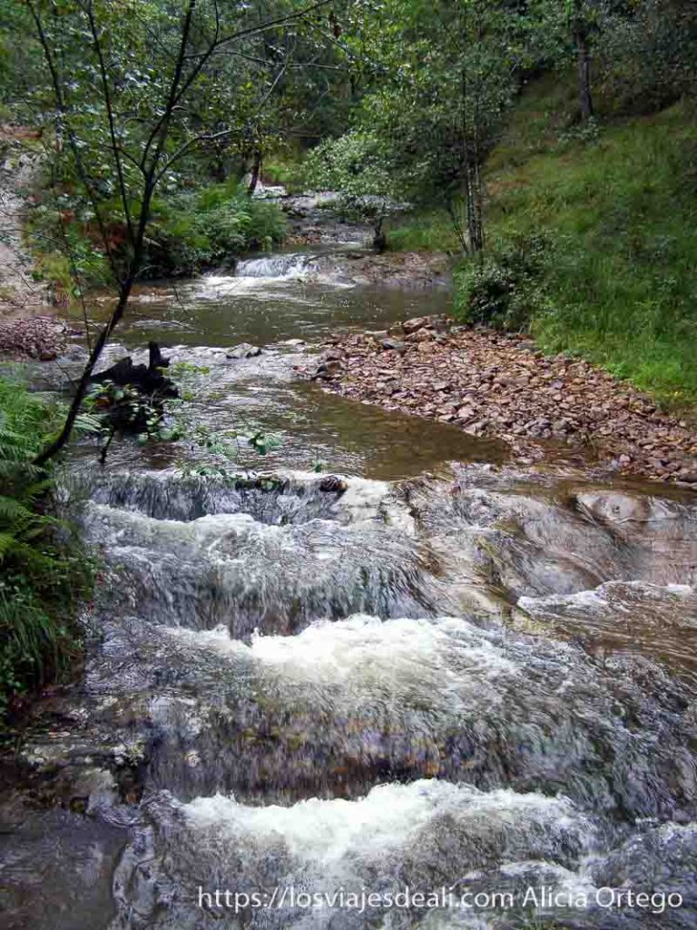 pequeños rápidos en el río del parque natural saja besaya