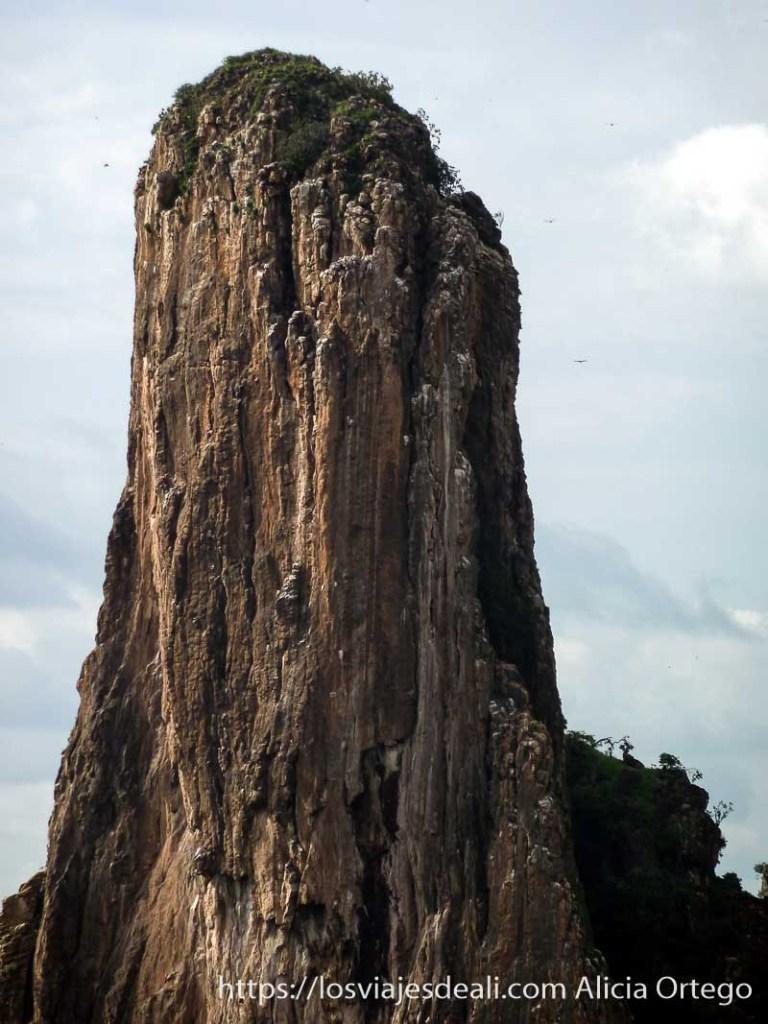 aguja de roca altísima rumsiki camerún
