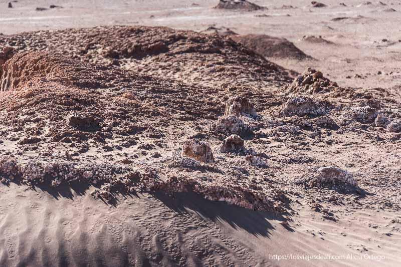 suelo con costra de sal que brilla en el valle de la luna de atacama