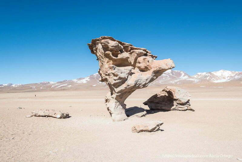 roca con forma de árbol en el desierto de silloni reserva de fauna andina eduardo avaroa de bolivia