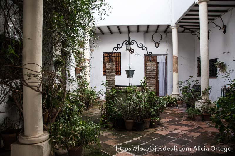 patio de casa particular con pozo en el centro y muchas plantas escapada a ronda