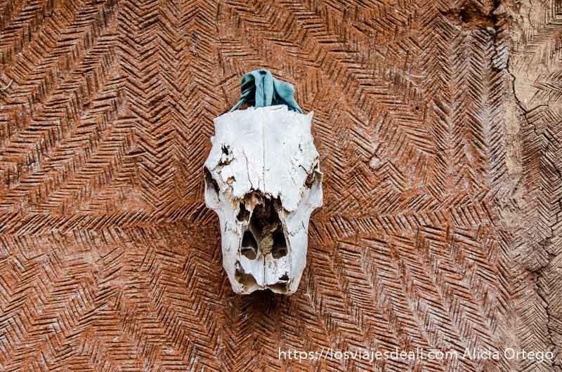 calavera e animal colgada en un muro exterior de una casa somba