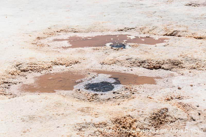 pequeño agujero donde burbujea el agua en los ojos del salar
