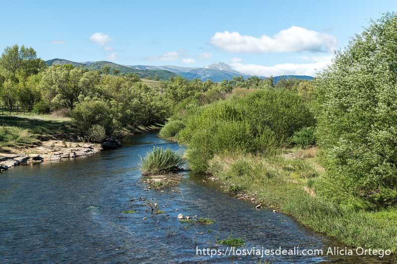 río lozoya con montañas al fondo y vegetación verde