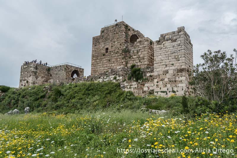 castillo de los cruzados con campo de flores delante y nubes de tormenta en la ciudad antigua de byblos