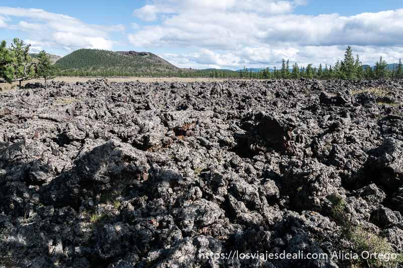 paisaje volcánico con algunos árboles tipo pino al fondo y un gran volcán en el viaje a mongolia