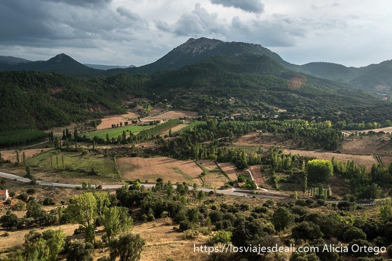 paisaje de valle con filas de árboles y montañas al fondo cubiertas de bosques con luz de atardecer