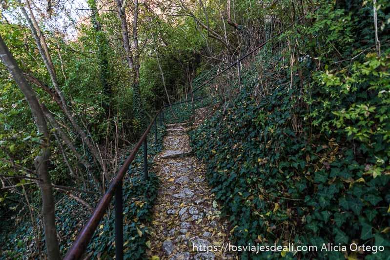 camino de subida en la montaña con barandilla de hierro y mucha vegetación alrededor en ivanovo sitio patrimonio de la humanidad de bulgaria