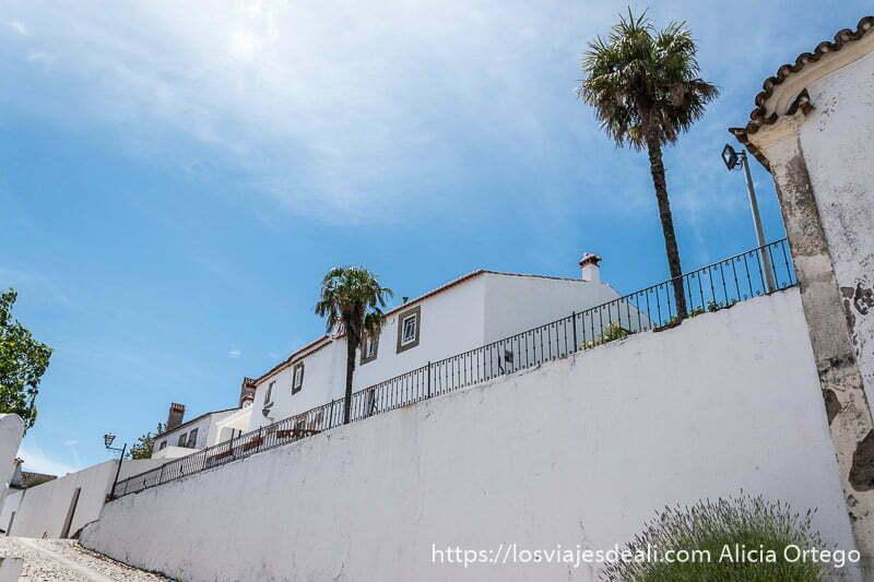calle de Marvao encalada con dos palmeras y una barandilla de hierro porque está en cuesta